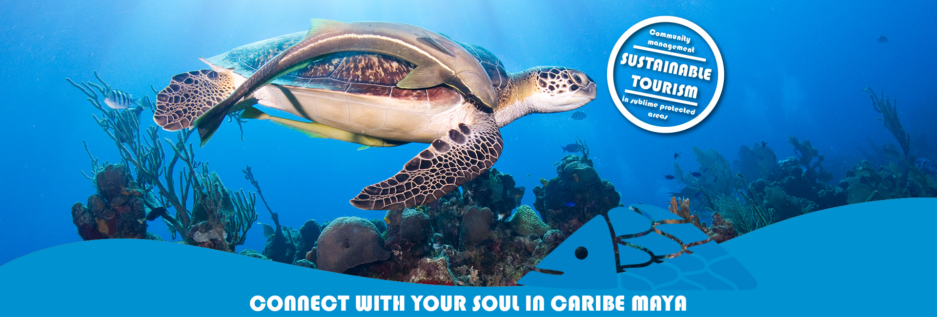 Connect your soul in Caribe Maya